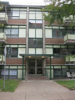 Center town, Large 1 Bedroom Available now!