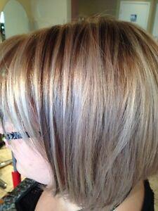 Home Hair Services Mobile Option  Edmonton Edmonton Area image 1