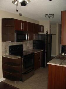 One month free, great locations, close to U of A