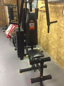 Mega max 3001 home gym workout mechine