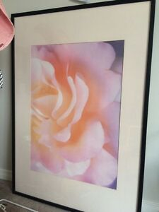 Huge Pink flower in frame  Oakville / Halton Region Toronto (GTA) image 1