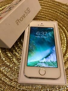 iPhone 5S Gold 16GB Rogers-Box&Case