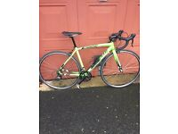 Specialized Allez Sport 2015 Road bike