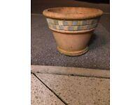 Terracotta pot 32cm x 23cm