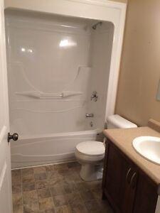 307 Lanark Dr, Paradise, 3 Bedroom, 2 Bath Main Floor House St. John's Newfoundland image 6