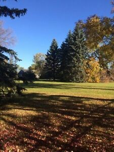 1/2 acre treed lot in East St. Paul