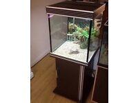 Aqua One 180L Tropical Fish Tank Setup
