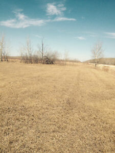60 Acres in Great Location
