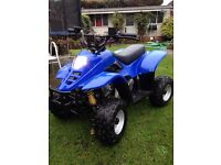Quad 50cc auto. Electric start