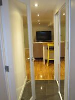 Newly Renovated Gorgeous High Park Unit