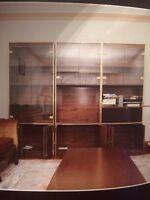 Display case / shelving unit