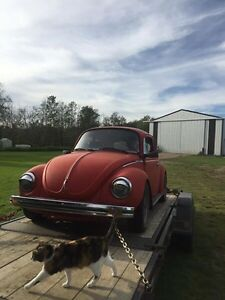 Looking for a parts VW Super beetle or just a beetle