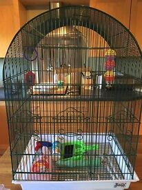 Good condition bird cage with loads of accessories for sale.