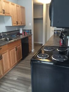 FURNISHED ROOM FOR RENT BY WHYTE AVENUE Edmonton Edmonton Area image 2