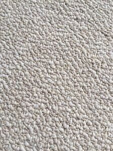 FREE - Berber Carpet
