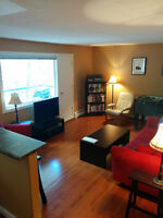 Cathedral - Sunny & Furnished One Bedroom Condo - Near Downtown