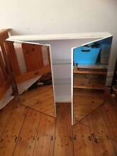 Bathroom Mirror Cabinet - excellent condition Randwick Eastern Suburbs Preview