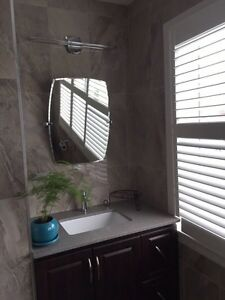 Renovating your home at affordable pricing  Cambridge Kitchener Area image 5