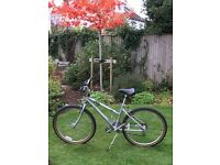 Raleigh 16L Cougar Bicycle silver