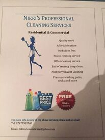 Looking for a professional cleaner