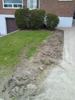 Grass Cutting and Landscape Care