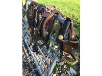 Pony harness
