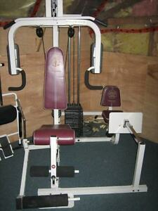 gold gym two seat weight system