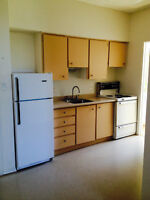 ***Bright and Clean*** 1 Bedroom Apartment in Trent Hills
