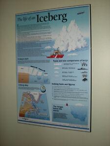 LIFE OF AN ICEBERG WALL PLAQUE Cambridge Kitchener Area image 1