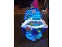 Fisher Price aquarium baby bouncer