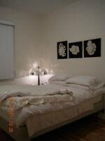 LACHINE: Bel Appart avec 2 chambres