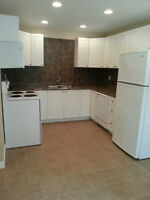 Petrolia - 2 Bedroom Townhouse For Rent - Available August 1st