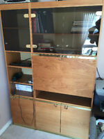 WALL UNIT WITH SHELVES/CUPBOARDS & BLACK TINTED GLASS.