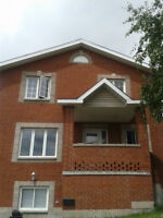 Beautiful Basement Suite + 1 bedroom available