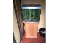 65 Litre fish tank complete set-up including stand/unit