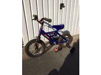 Raleigh Micro Bike 10'' frame