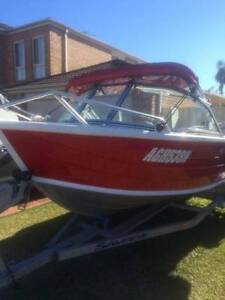 SAVAGE Bay Cruiser 4.35m Prestons Liverpool Area Preview