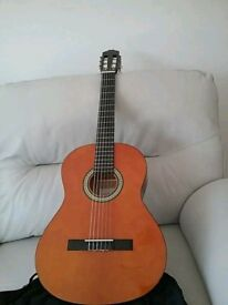 Special edition classic 6 string acoustic guitar