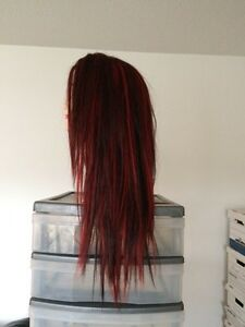 Brand New Lace Front Human Hair Wig $240.00 Strathcona County Edmonton Area image 3