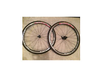 Fulcrum Racing 77 wheelset 700C 28mm with brand new Gator Hardshell tyres