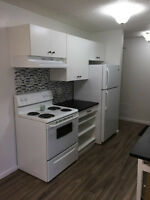 Newly Renovated!! 2 Bedroom Condo for Rent