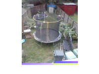 Sportspower 10ft Trampoline and Enclosure 8367