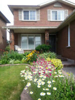 Awesome Rental!! Near Mississauga Square One (Lady Only)