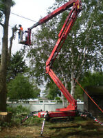 We Remove Trees At Camp & Cottages.. We Clear For Hydro Line!!!