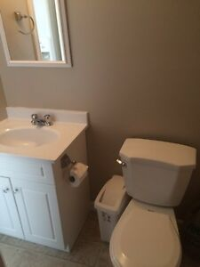 1 bedroom apartment in Long Harbour St. John's Newfoundland image 5