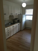 2 Bed Suite for Rent - Golden Mile - Available Immediately