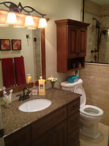 DB Contracting, home renovation specialist London Ontario image 1