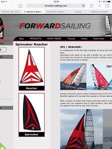 Recherche spinnaker ou gennaker pour catamaran 5.5 ou 6 mètre