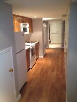 Newly Renovated, one bedroom basement apartment for RENT