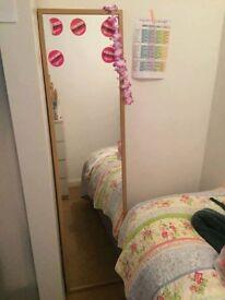 Floor length free standing mirror